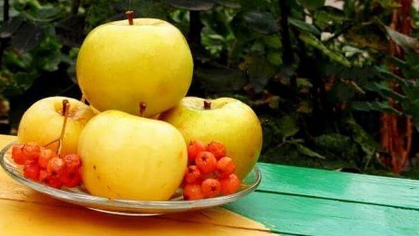 Мочені яблука з пікантним смаком і ароматом! Найкращі рецепти!